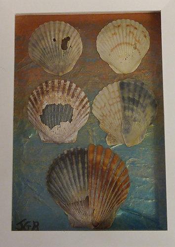 Even broken shells are beautiful | 6 x 8 inch | Seashell wall art