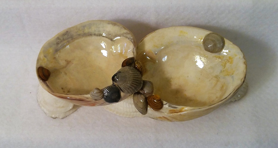 Two compartment decorative seashell tray, top view