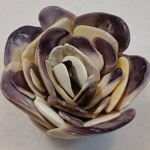 Shell Flower | Quahog | Shell Art | Purple | Paperweight