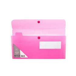 Expandable DL Envelope - 6 Div
