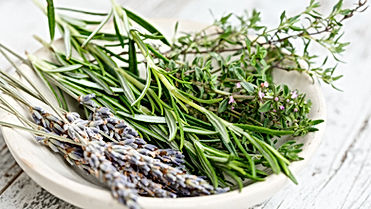 A plate with aromatic herbs including lavender from provence and natural rosmarin