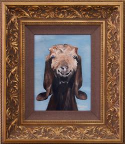 Gertie the Goat Portrait