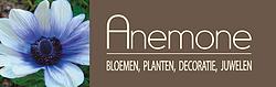 Bloemen Anemone.webp