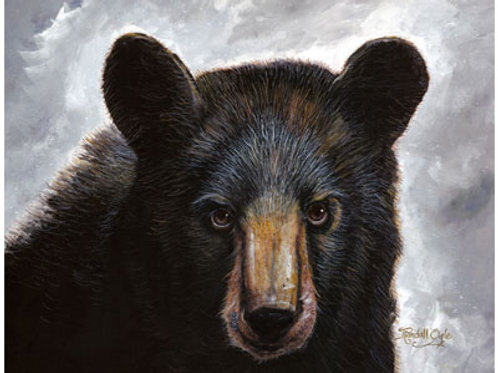 Mr. Bear by Randell Ogle - Signed & Numbered Limited Edition