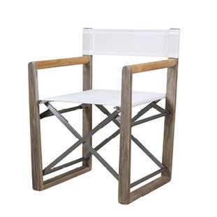 BREEZE Director's Chair