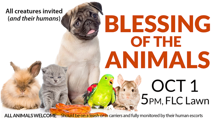 Blessing of the Animals Slide