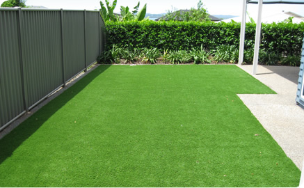 sample_lawn_turf_photo.jpg
