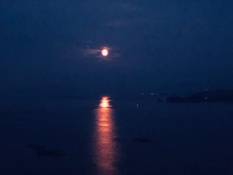 いつも、心にお月さまを..