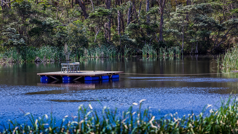 Pontoon on the lake