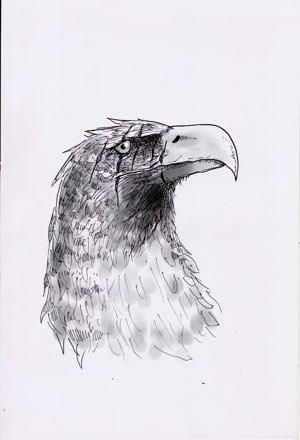 Fantasyroman Tad Time   Illustration: Valkyrienadler
