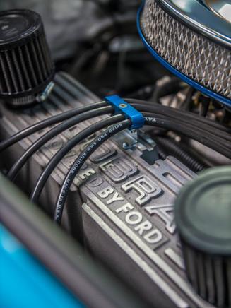Cobra Drive 1.jpg