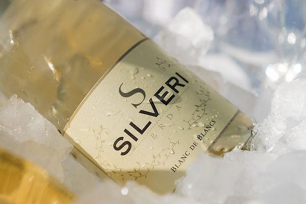 Silveri Blanc led.jpg
