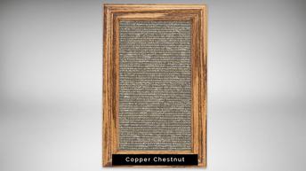copper chestnut - natural light frame.pn