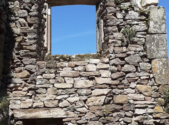 Habitation fenêtres