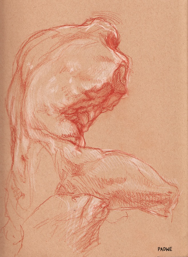 Sketch of the Belvedere Torso VII