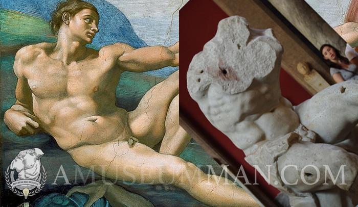 Michelangelo's Adam and The Belvedere Torso
