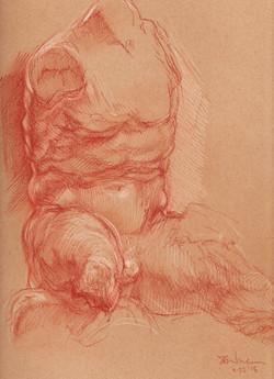 Sketch of the Belvedere Torso