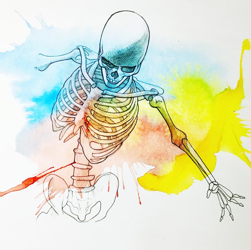 Anatomica ia