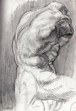 Sketch of the Belvedere Torso VIII
