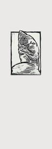 Belvedere Torso Relief Print No1