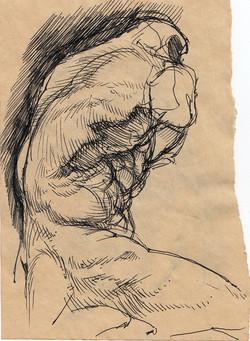 Sketch of the Belvedere Torso VI