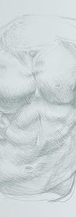 Padwe_Phil_silverpoint-gaddi-torso-sketch.png