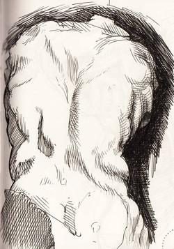 Sketch of the Belvedere Torso IX