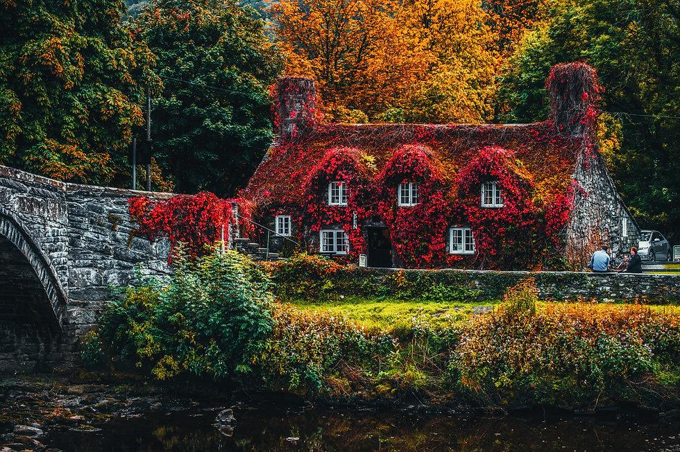 architecture-autumn-bridge-1438248.jpg