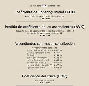 Coeficientes camada C.jpg