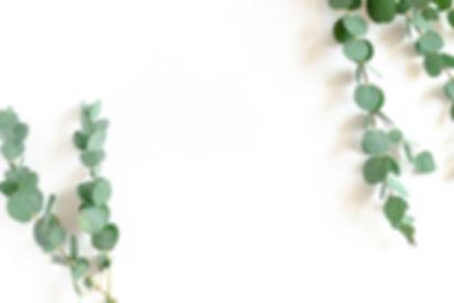 Border frame made of eucalyptus branches