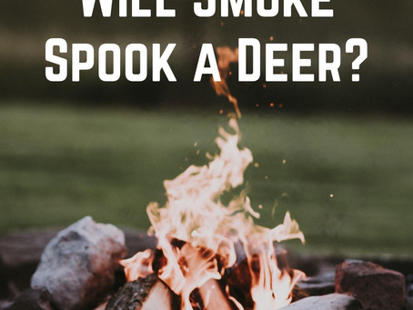 Will Smoke Spook a Deer?