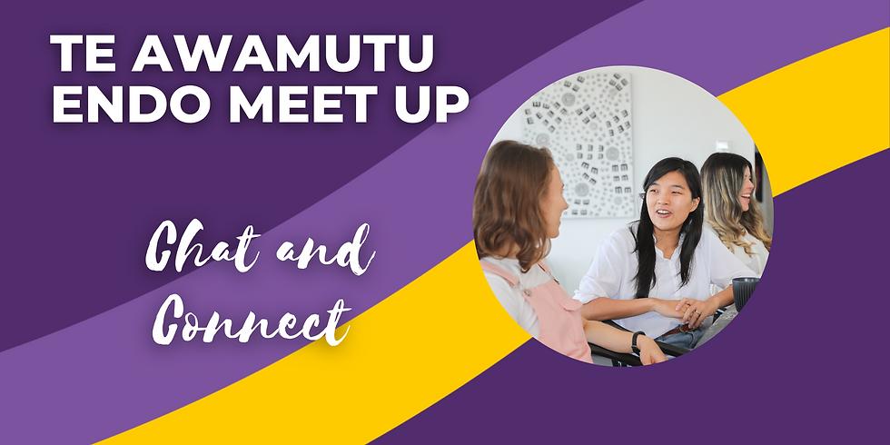 Te Awamutu Endo Meet Up - July