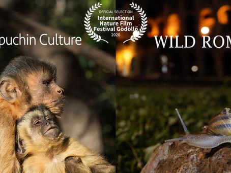 International Nature Film Festival Gödöllő Final