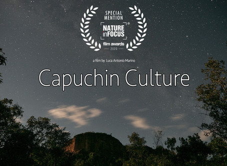 Special Mention at the Nature inFocus Film Awards!