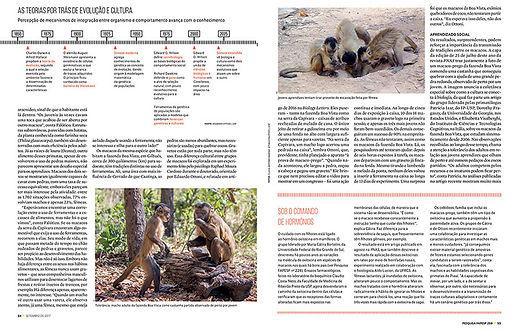 rivista-pesquisa-fapesp_2_orig.jpg