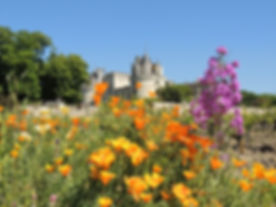 Loire valley short tours
