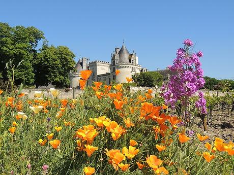 Loire valley short tours