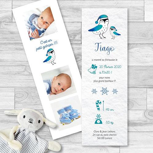 """Faire-part de naissance """"Lovely bird"""" pour bébé garçon. Oiseaux d'hiver réalisé à l'aquarelle, flocons de neige, rose, bleu."""