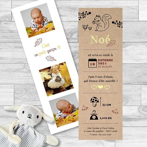 """Faire-part de naissance """"sweet quirrel"""" pour bébé garçon, saison automne. Ecureuil, feuilles, effet papier kraft, champignon."""
