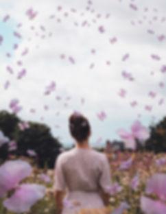 Hydrangea butterflies_website.jpg