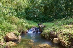Pond in Bijagua