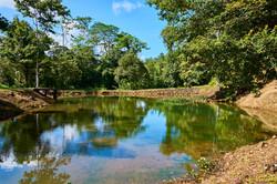 Pond at Finca Experimental Cata