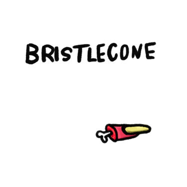 Bristlecone | Coming Soon