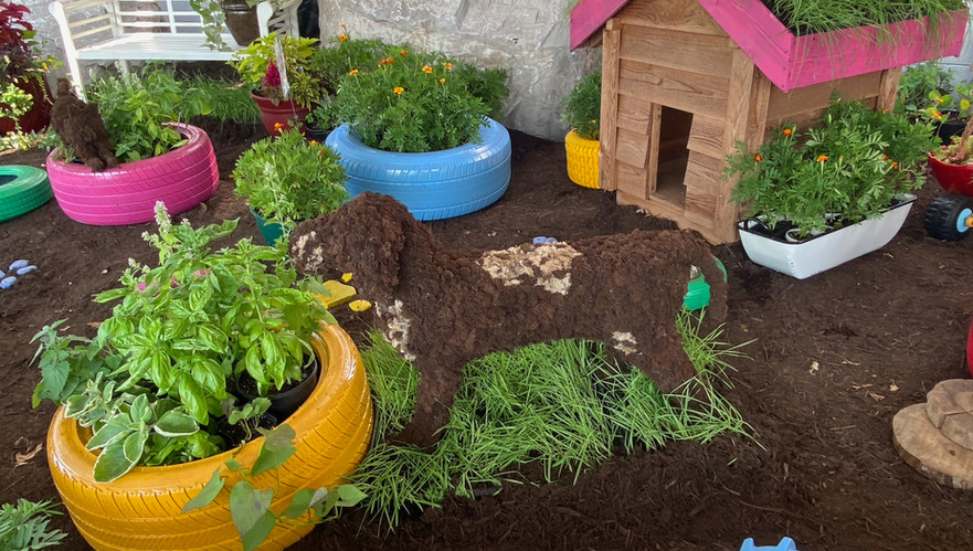 Snuffy looks right at home amidst the colorful tires and pet-friendly plants.