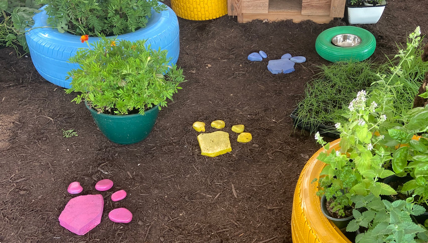 Follow the paw prints to our pet friendly snuffle garden.