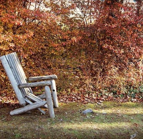 Comfort ability and Procrastination