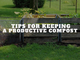 Keeping A Productive Compost