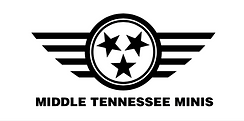 Middle Tennessee MINI, Nashville car club