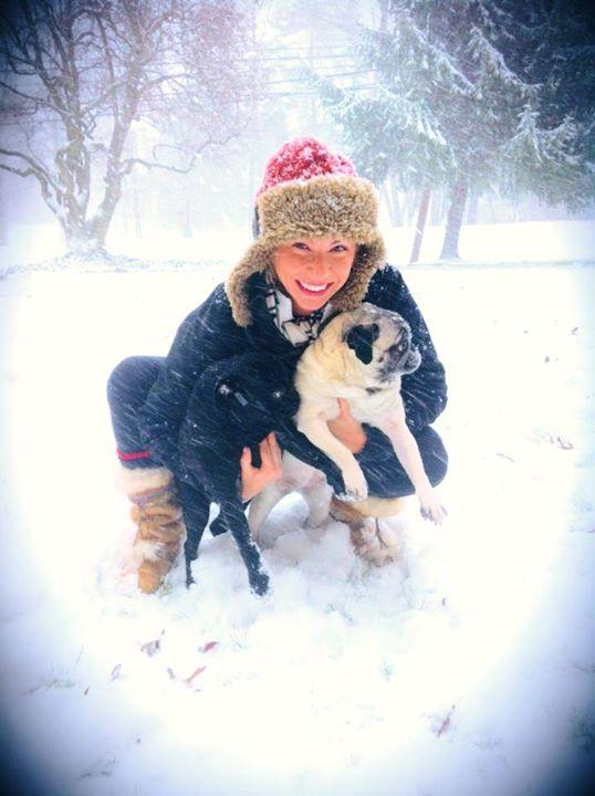Snow Pugs!