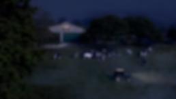 Screen Shot 2019-07-12 at 16.55.35.png